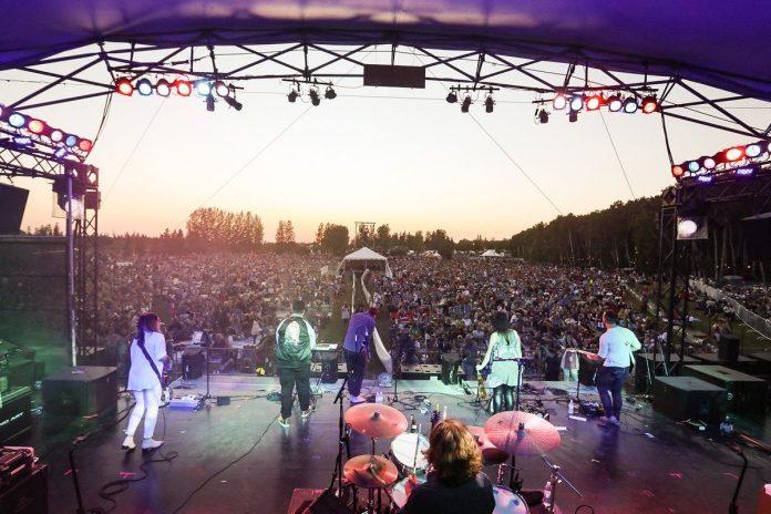 Festival - Folk You